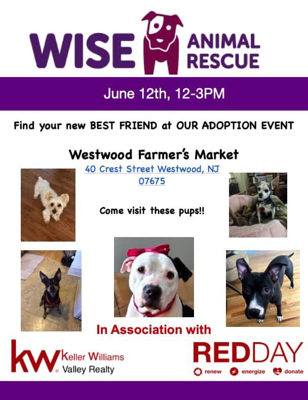 Westwood Farmers Market Wise Adoption